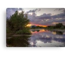 Peace and Trees Canvas Print