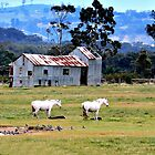 Iconic Rural Scene by Julie Sleeman