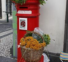 Mailbox Madeira by AnnDixon
