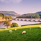 Spring in Ladybower Reservoir by Jose Vazquez