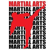 Martial Arts Photographic Print