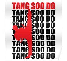 Tang Soo Do Poster