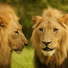Royal Brothers by AntonAlberts