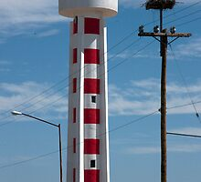 Light house And Osprey Nest by phil decocco