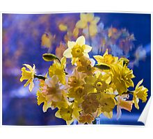 Floral Reflections Poster