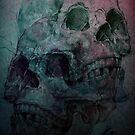 Skulls Skulls! by shannlarsson
