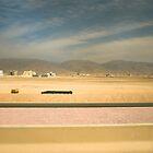 Desert road, Oman by Rick  Senley