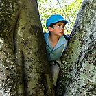 boy in a tree by Anne Scantlebury