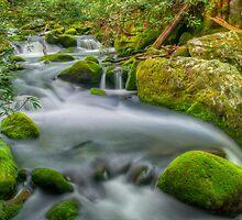 Roaring Fork River by JHRphotoART