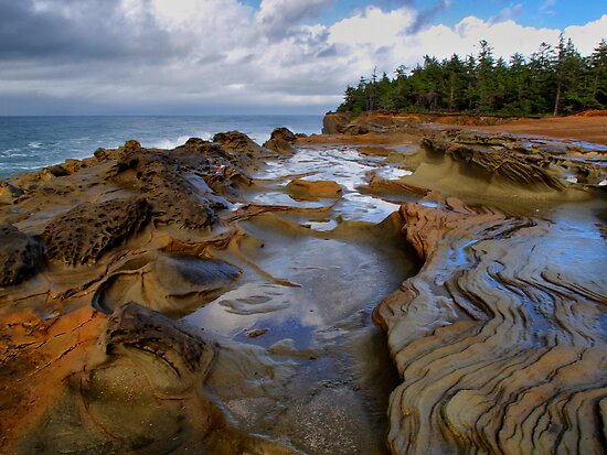 Lets Do The Twist by Charles & Patricia   Harkins ~ Picture Oregon