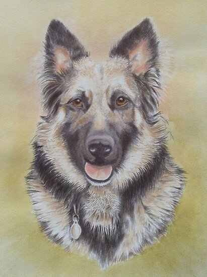 Foxy German Shepherd by FranEvans