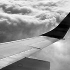 Plane Wing by musicguy2341