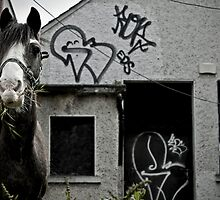 Urban horse by Esther  Moliné
