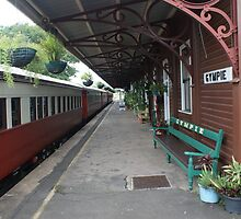 Gympie historical train station, Queensland, Australia by Adam Symes
