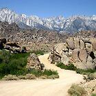 The Dirt Road by marilyn diaz