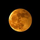 Perigee Moon © by © Hany G. Jadaa © Prince John Photography