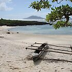 Vanuatu Canoe by William Goschnick