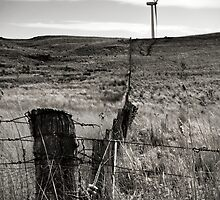 Wind-Swept And Barren by Vince Russell