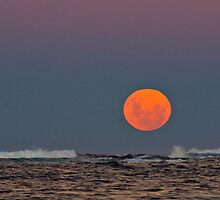 Super Moon by Doug Cliff