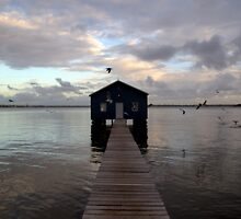 Crawley Boat Shed by Angie66