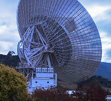 Dish - Tidbinbilla Tracking Station by Melissa Gray
