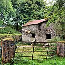old irish farm house  by TIMKIELY