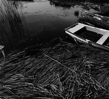 Boats of the Fermanagh lakelands #1 by ragman