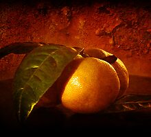 mandarins three by Clare Colins