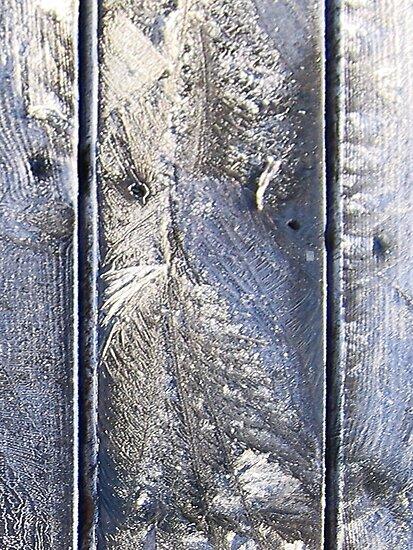 Frost Owl #01 by Gréta Thórsdóttir