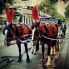 Horse and carriage ride by Nupur Nag