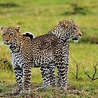 Loving Couple-Kenya by Pascal Lee (LIPF)