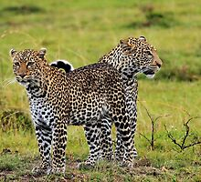 Loving Couple-Kenya by Pascal Lee
