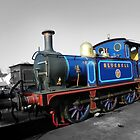 Bluebell Railway by hootonles