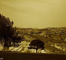 View of Jerusalem by ramzi