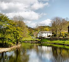 The River at Sawley by Irene  Burdell