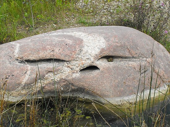 The Face In The Rock, With A Frog For An Eye!! by Tracy Faught