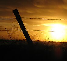 Fence Post by Pbratt79