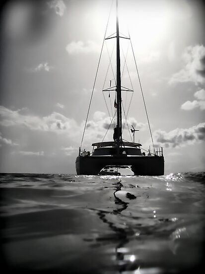 """""""Certitude"""" in her  element by globeboater"""