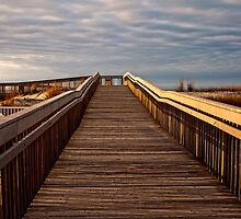 Early Morning Beach Walk by Debra Fedchin
