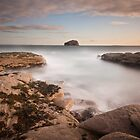 Bass Rock by Daniel Davison