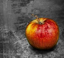 Red Apple on Gray Background by Randall Nyhof