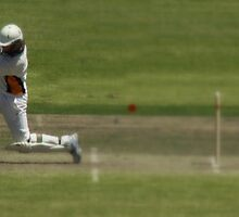 Bowled,  stumped, or caught ? by myraj
