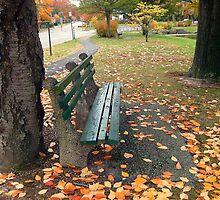 Empty Park Bench  by Jane Neill-Hancock