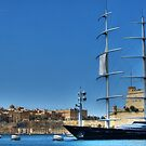 The Maltese Falcon by FC Designs