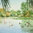 Duck Pond - Pelsall by Lynne  Kirby