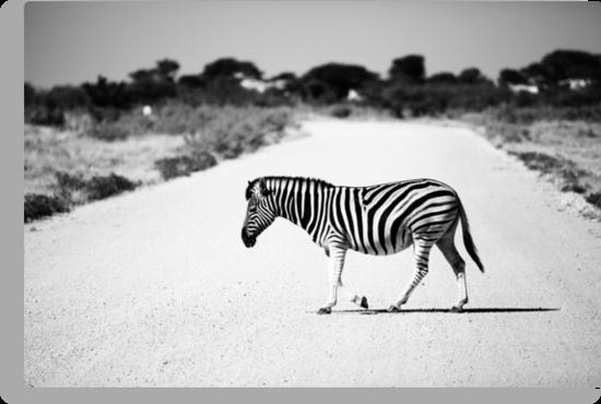 Zebra Crossing by muzy