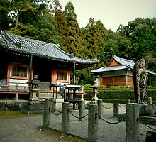 The Tiny Temple Houses of Daigo-ji by skellyfish
