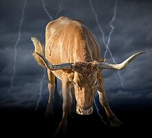 Bull Market, symbol of the increase in financial markets by Randall Nyhof