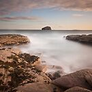 Bass Rock Square by Daniel Davison