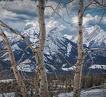 Jasper Mountain Range in December by Randall Nyhof
